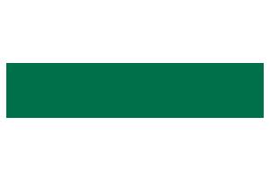 vicko-logo